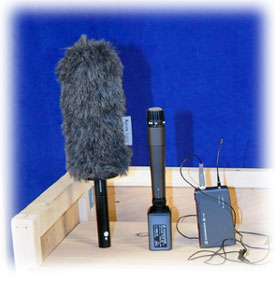 mics for rent
